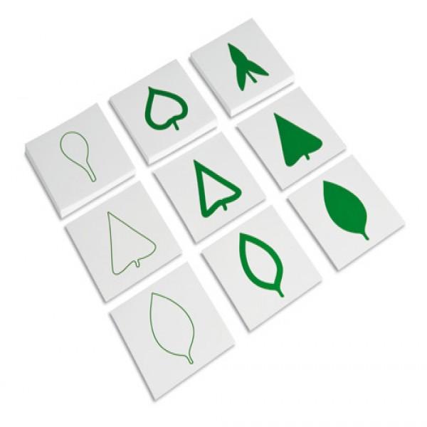 Các thẻ hình lá khác nhau