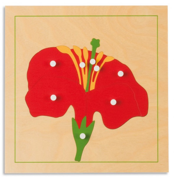 Bảng xếp hình thực vật: Hoa