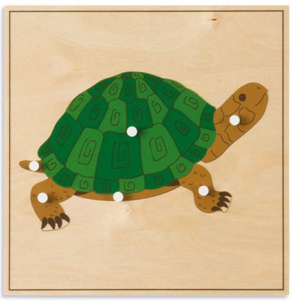 Bảng xếp hình động vật: Con rùa