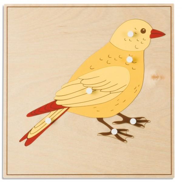 Bảng xếp hình động vật: Con chim
