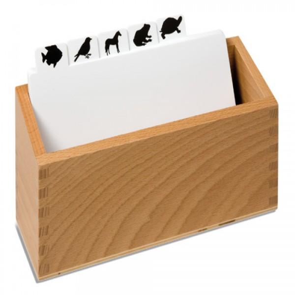 Hộp đựng các thẻ động vật học