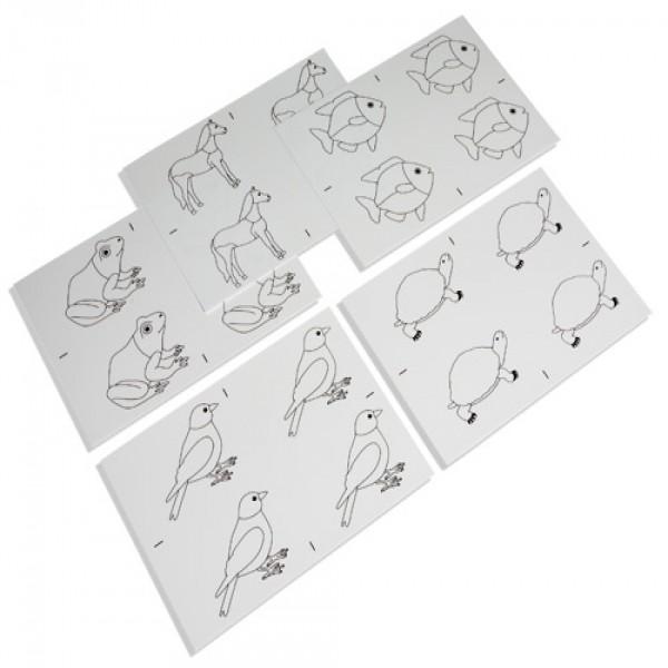 Các thẻ hình vẽ động vật