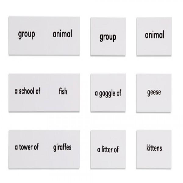 Bộ thẻ tên các con vật và nhóm của chúng