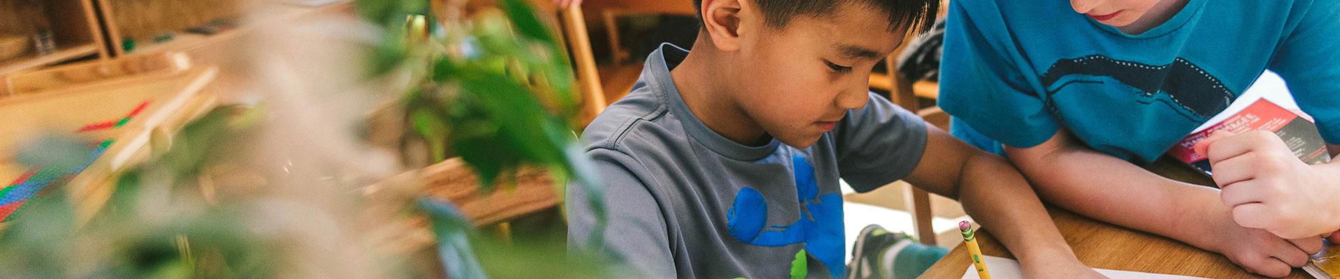 Đối tác Montessori